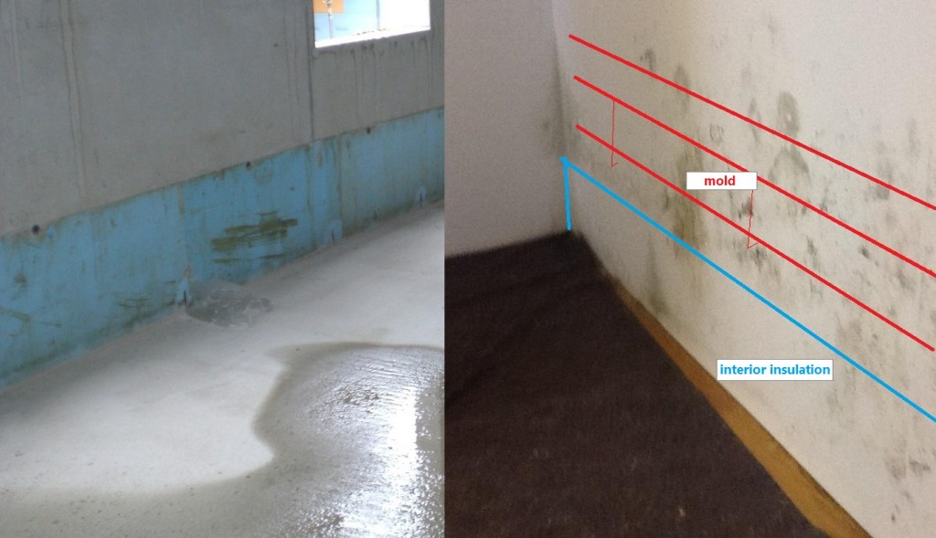 Investigation Of Mold Formation On A Wall With Thermal